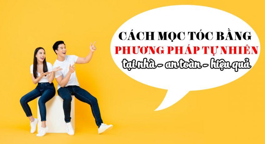 hinh dai dien moc toc bang phuong phap tu nhien